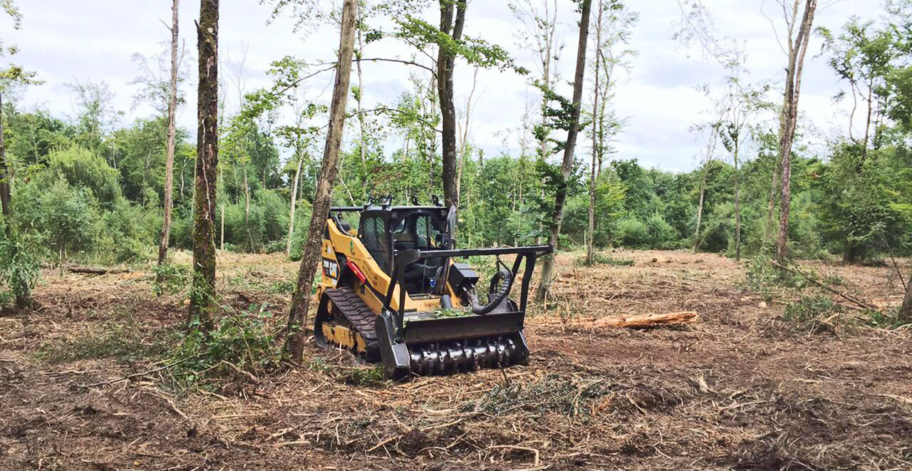 Vale Tree Surgeons - Scrub Clearance - Forestry Mulching
